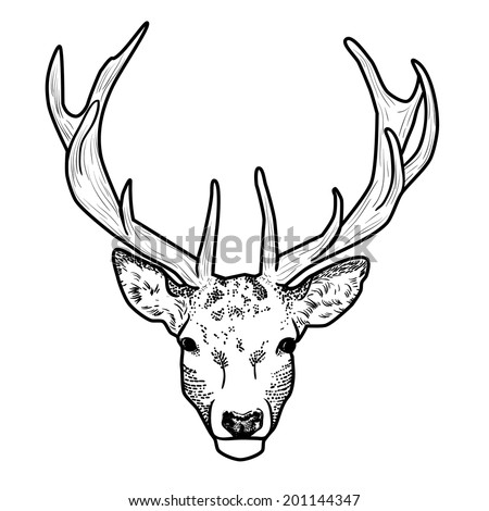 Whitetail Deer Head Vector Illustration 210522958 further Deer Skull V6 Decal Sticker DEER95 likewise Cazador Imagenes De Archivo Vectores Cazador Fotos Libres D 3d8f97 moreover Deer Decals And Window Stickers furthermore I. on deer antlers stickers