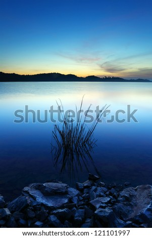 Grass and stone on a water dam in the sunrise