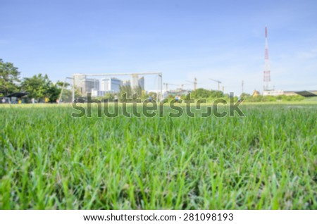 Grass of soccer fields