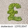 Grass pound sign on cracked earth background - stock photo