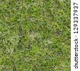 Grass Seamless Tileable Texture. - stock photo
