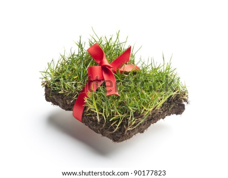 grass with christmas decoration