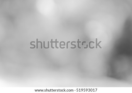 Gray black white bokeh out of focus background from nature forest