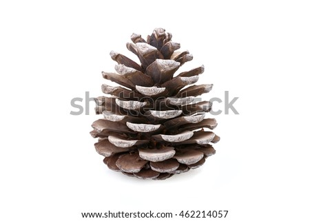 Gray cone isolated on white background