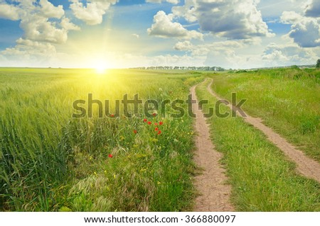 green field and sun on blue sky