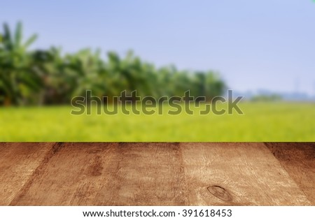 Green field Wood planks floor. Beauty nature background