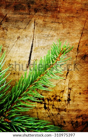 Green fir branches on an old wooden background, selective focus