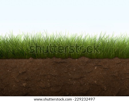 Blue sky green grass brown earth stock illustration for Soil and green