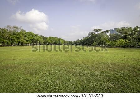 Essay on morning scene in hindi language image 3