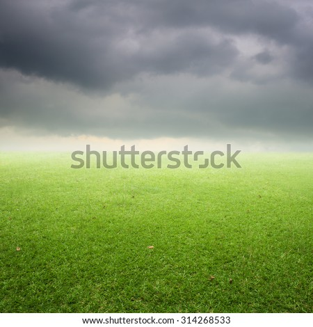 Green Grass fields and rainclouds for outdoor background.