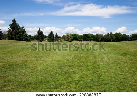 Green grass lawn at sunny day