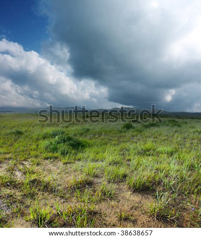 Green grass on sand and storm clouds