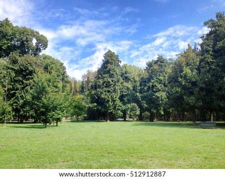 Green lawn with trees in park under sunny light. Milan, Italy