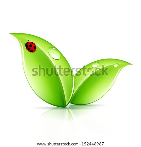 Green Leaves Symbol with Ladybird