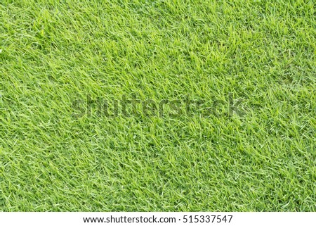 natural wood meadow grass - photo #2