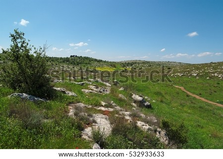 Green Mediterranean valley among hills in spring