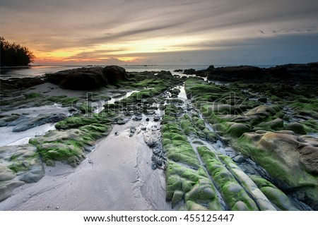 green moss seascape at Kudat Sabah Malaysia. Image may contain soft focus and blur area due to long expose.