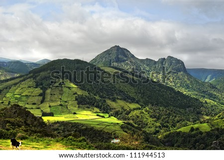 green pasturelands and mountains of flores in springtime
