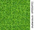 green plants and grass. on outdoor background - stock photo