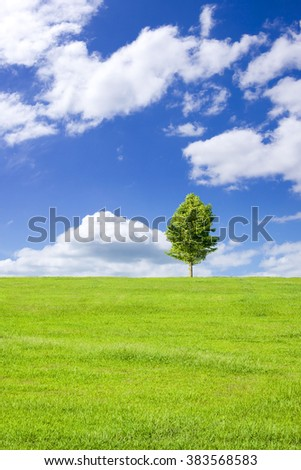 Green prairie and tree