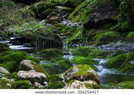 Green rock stream