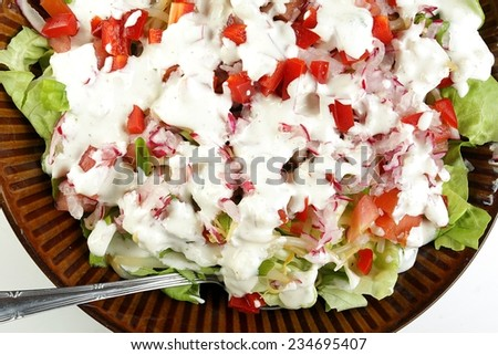 Green salad with red peppers, onions, radishes, spices and yogurt