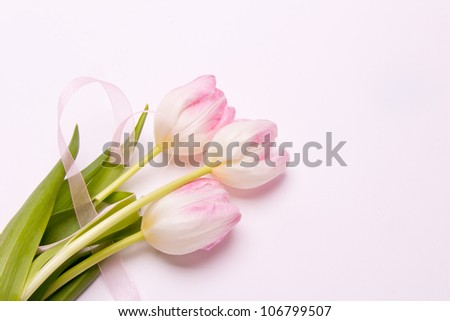 greeting card with pink tulips