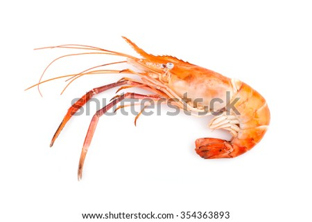 grilled prawns on white background
