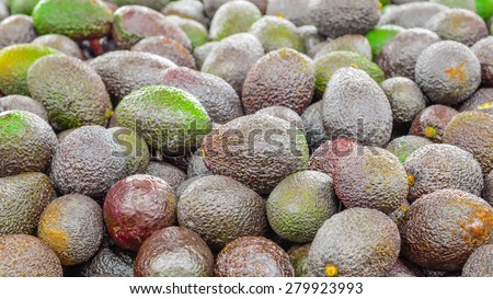 Group of fresh organically grown mini avocados in the farmer market at Puyallup, Washington, USA. A close up full l frame of avocados. Panoramic style.