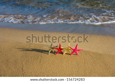 Group of Starfish on the beach at sunrise