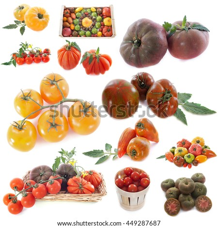 group of tomatoes in front of white background