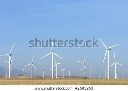 group of windmills at sunrise