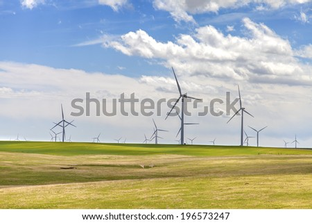 Group of windmills in spring meadows