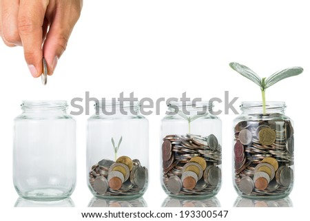 Growing plant step with coin money,start your investment on today