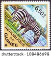 "GUINEA - CIRCA 1975: A stamp printed in Guinea from the ""Wild Animals"" issue shows a  Grant's Zebra (Equus quagga granti), circa 1975. - stock photo"