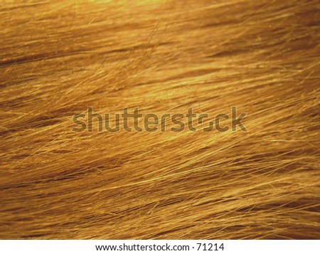 hair background