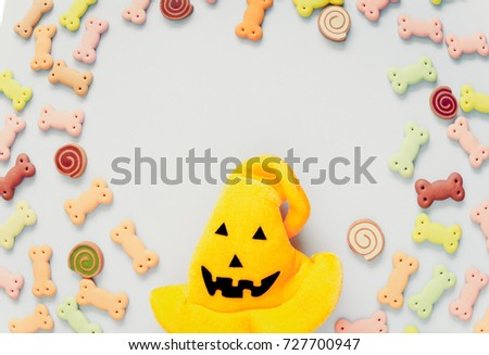 Delicious dog biscuits dog snack dog stock photo 583658803 shutterstock - Dogs for small spaces concept ...