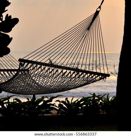 hammock on palm tree and sea background at sunset