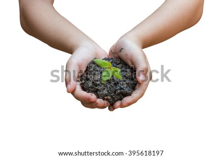 Hand and plant isolated on white background with clipping path