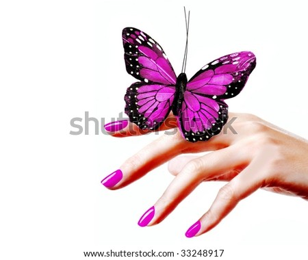 Blue Butterfly Isolated On White Background Stock Photo ...