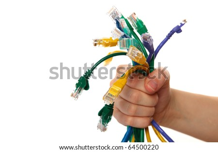 Hand Holding Colorful Internet Cables on White Isolated Background