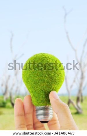hand holding eco light bulb, energy concept