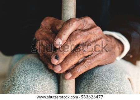 hand of a old man holding a cane in morning light