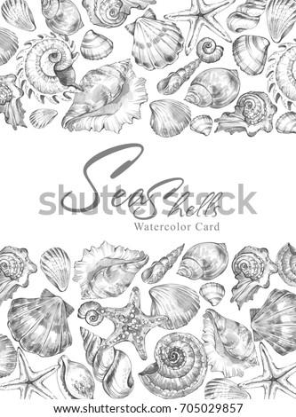 Set Mushrooms Oyster Vector Hand Drawn 170443499