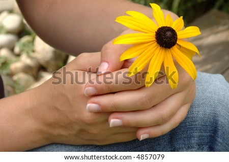 hands are holding a bloom