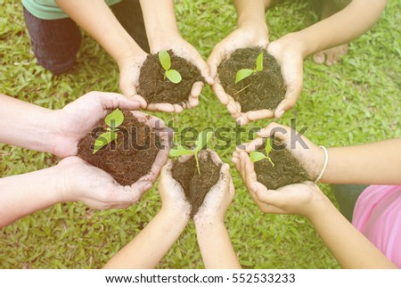 Hands holding sapling in soil surface (blur)
