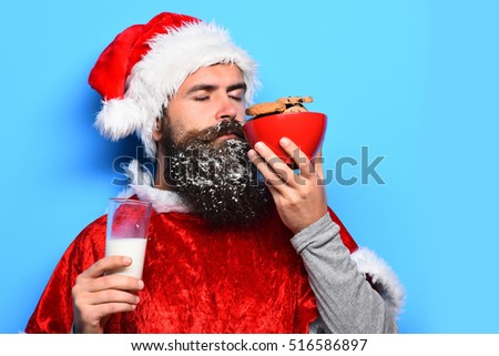 handsome bearded man with stylish mustache and long snowy beard on serious face holding and sniffing chocolate chip cookies in red santa suit on blue studio background