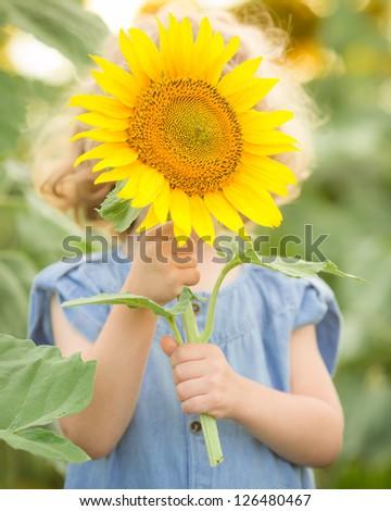 asian singles in sunflower Single sunflower against blue summer sky single beautiful sunflower in the summer field single sunflower and blue summer sky single sunflower and blue sky single flower.