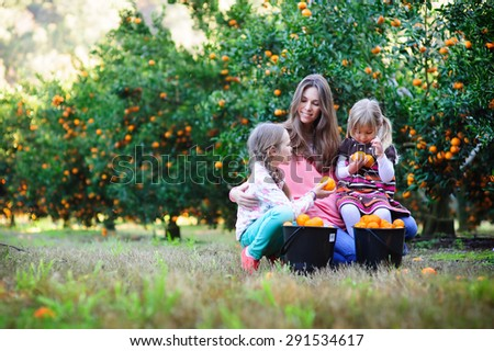 happy family picking fresh organic fruits on a farm