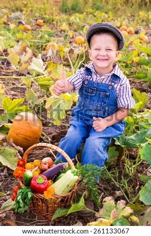 Happy kid sitting on pumpkin's field with basket of vegetables and signing thumbs up